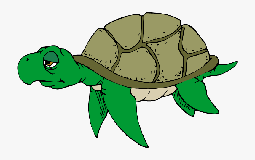 Sad Sea Turtle Clipart, HD Png Download, Free Download
