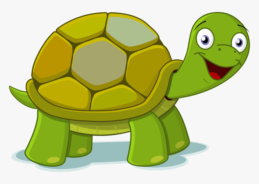 Big Green Turtles Clipart - Turtle Clipart, HD Png Download, Free Download