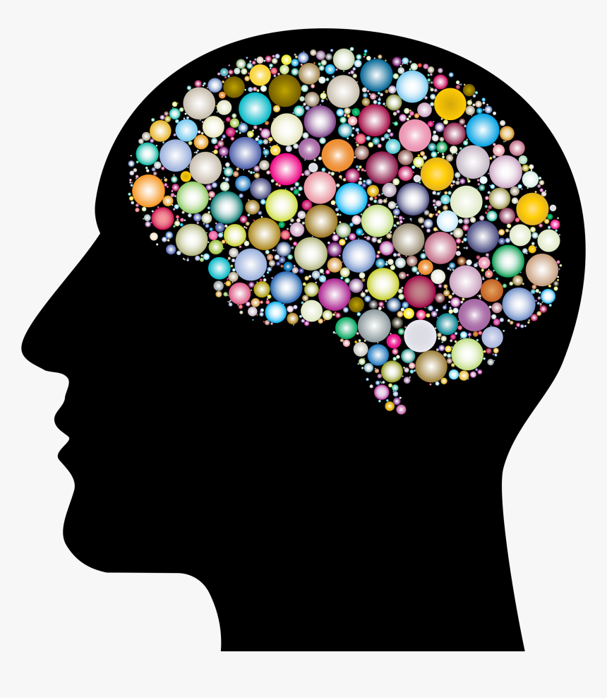 Transparent Brain Transparent Png - Head With Brain Clipart, Png Download, Free Download