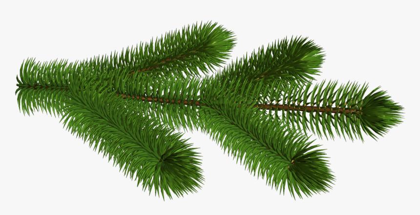 Christmas Pine Boughs Clip Art | Dttctr.newyearplus2020.info