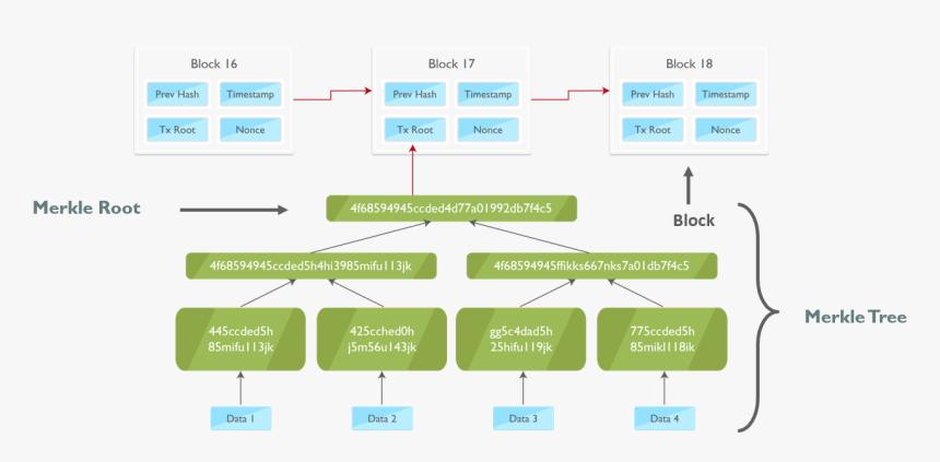 Merkle Tree Top Blockchain Interview Questions Edureka - Merkle Tree Blockchain, HD Png Download, Free Download