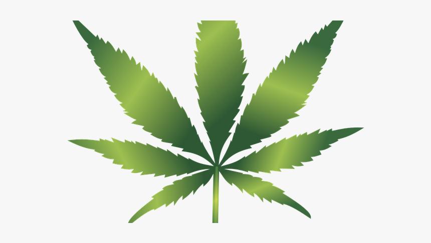 Marijuana Leaf Svg Free Hd Png Download Kindpng