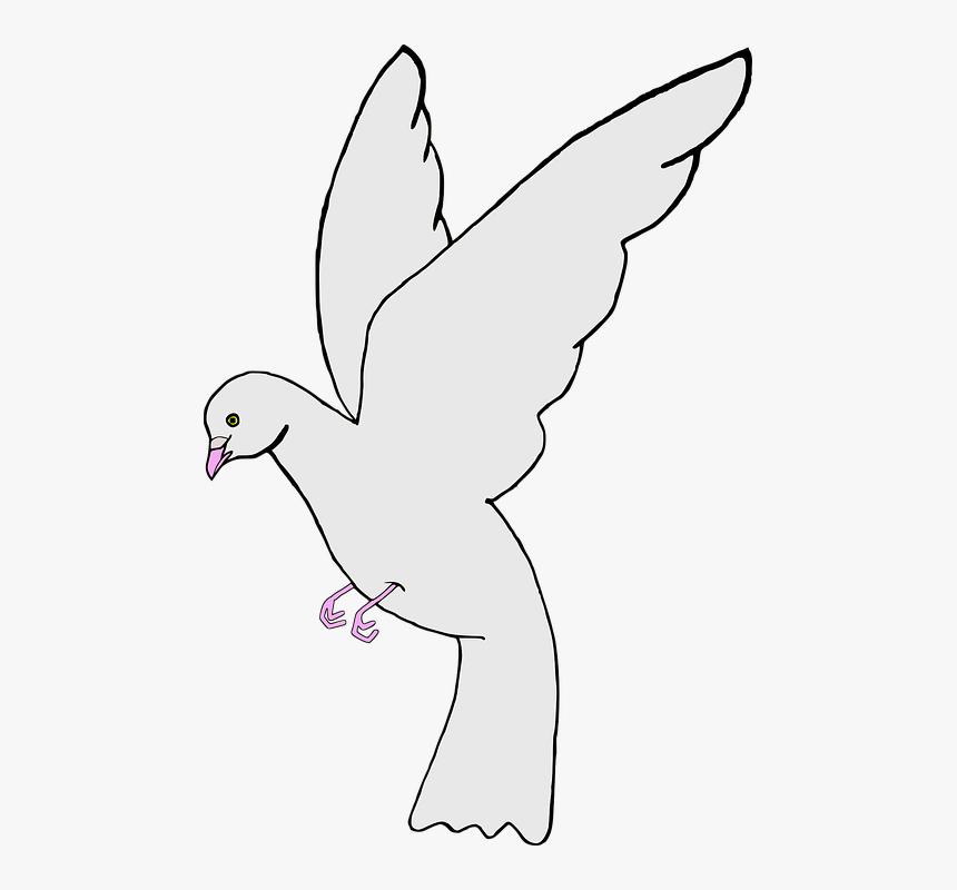 468 4689425 gambar sketsa burung merpati putih hd png download