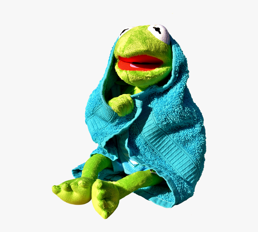 Frog - Kermit The Frog Spa, HD Png Download, Free Download