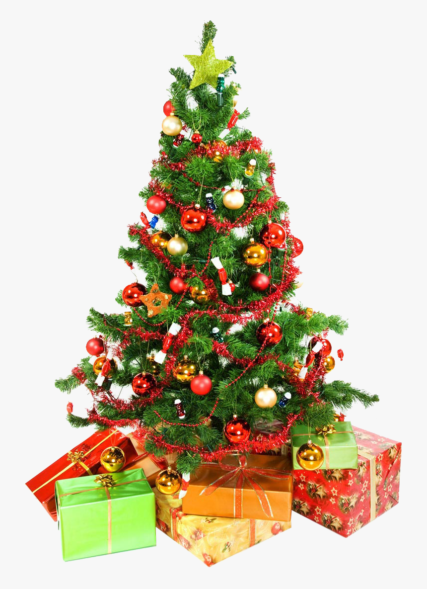 Christmas Tree Presents Underneath Png Image - White Background Christmas Tree, Transparent Png, Free Download
