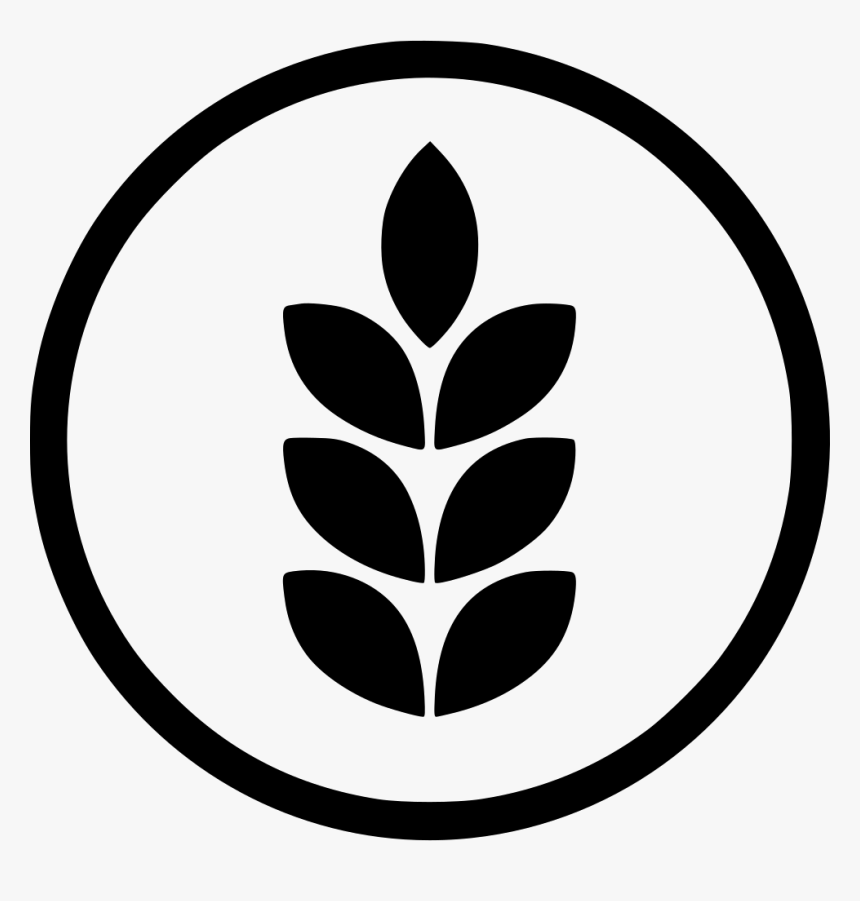 Gluten - Gluten Free Png, Transparent Png, Free Download
