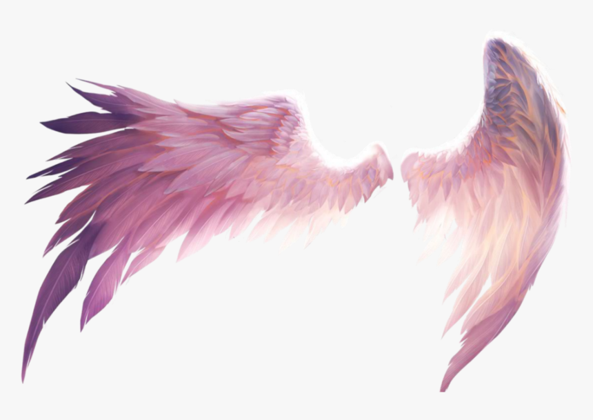 Transparent Demon Wings Png - Transparent Pink Angel Wings, Png Download, Free Download