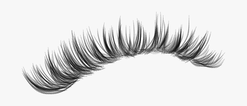 #lashes #makeup #lash #eyelashes #eyeliner #fakelashes - Long Eyelashes For Editing, HD Png Download, Free Download