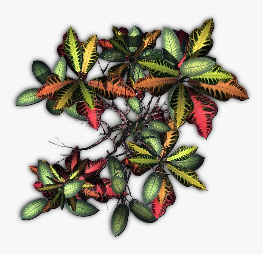 Jungle Plants Png, Transparent Png, Free Download