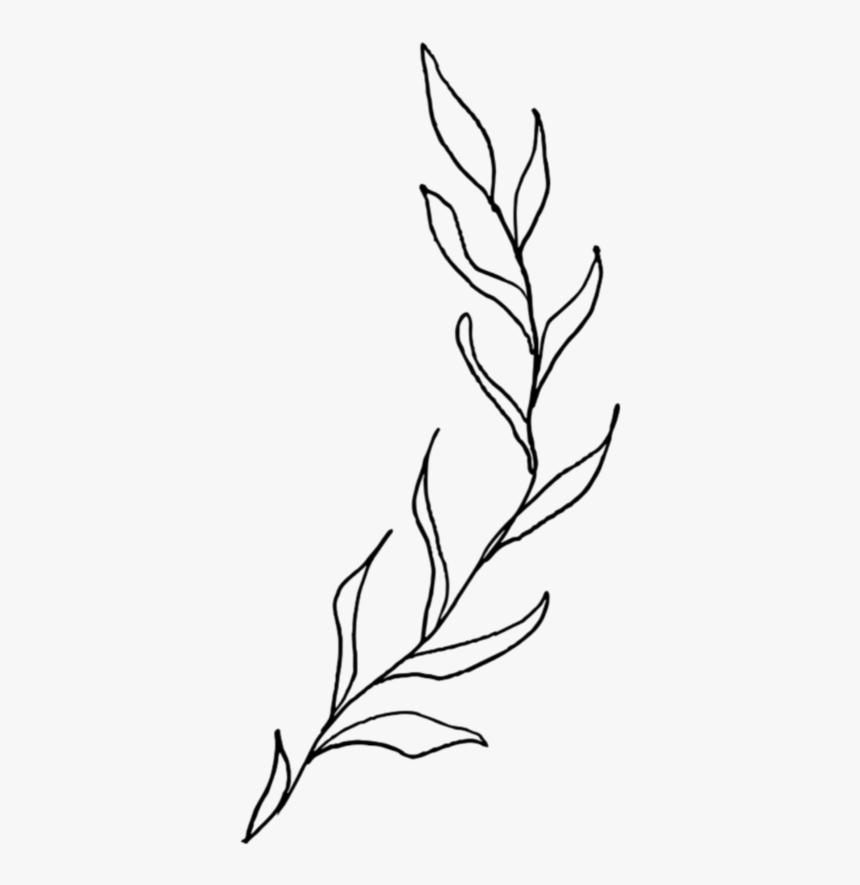 Freetoedit Leaves Leaf Tree Nature Bush Bushes Aesthetic Leaves Drawing Hd Png Download Kindpng