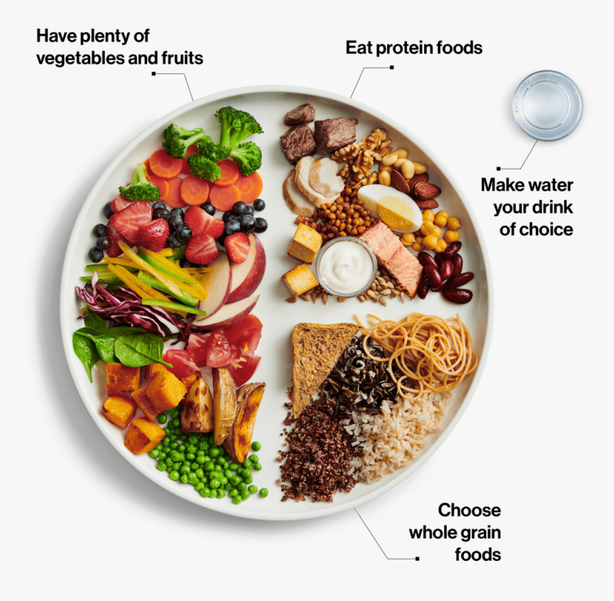 Visual En - Canada Food Guide 2019, HD Png Download, Free Download