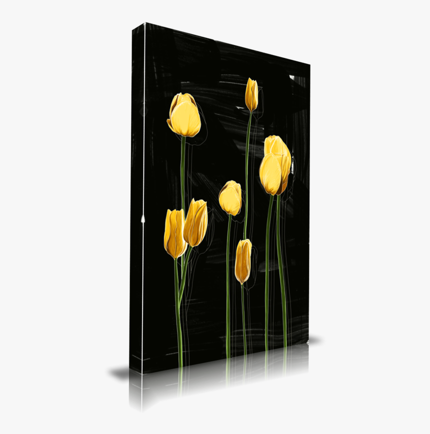 Yellow Tulips - Dandelion, HD Png Download, Free Download