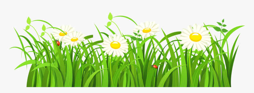 Grass Vector Png Image - Green Grass Vector Png, Transparent Png, Free Download