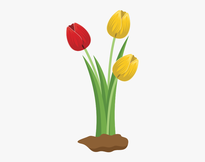 Tulips - Big Flowers Clip Art, HD Png Download, Free Download