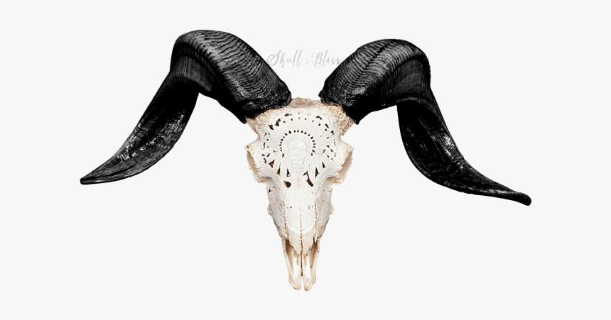 Carved Ram Skull - Ram Skull Png, Transparent Png, Free Download