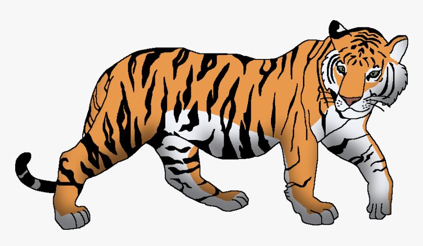 Wildlife Animal Pedia Wiki Tiger Clipart Hd Png Download Kindpng