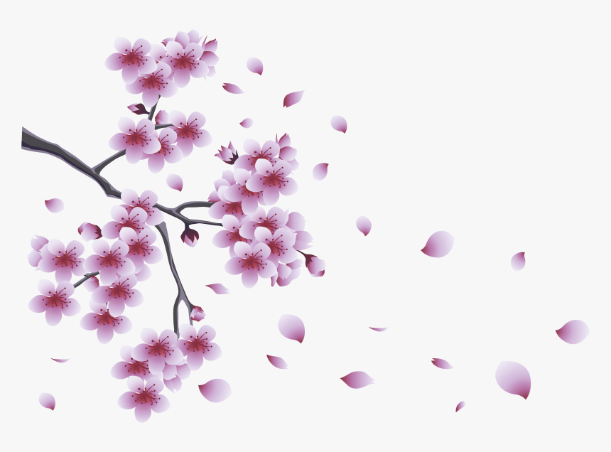 Branches With Flowers Png, Transparent Png, Free Download