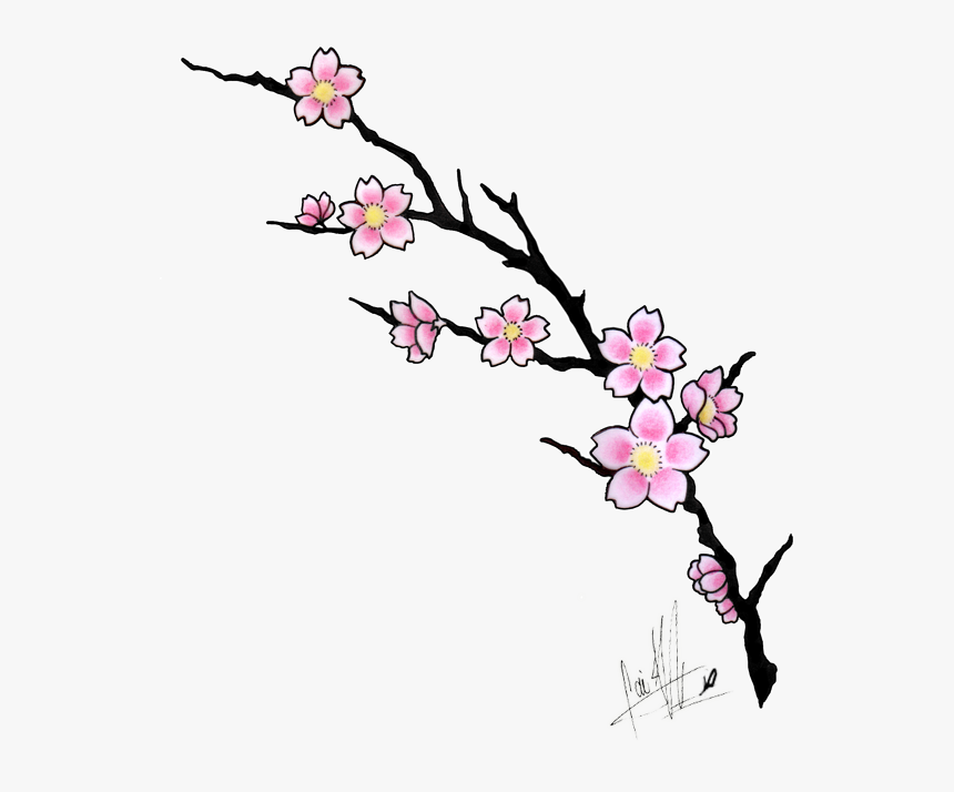 Clip Art Cherry Blossom Tattoos Tattoo Cherry Blossoms Tattoo Design Hd Png Download Kindpng