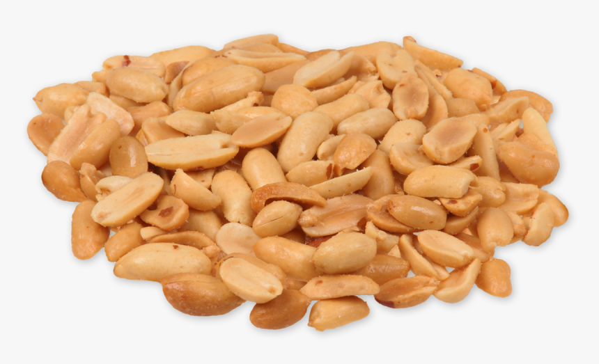 Peanut Seed, HD Png Download, Free Download