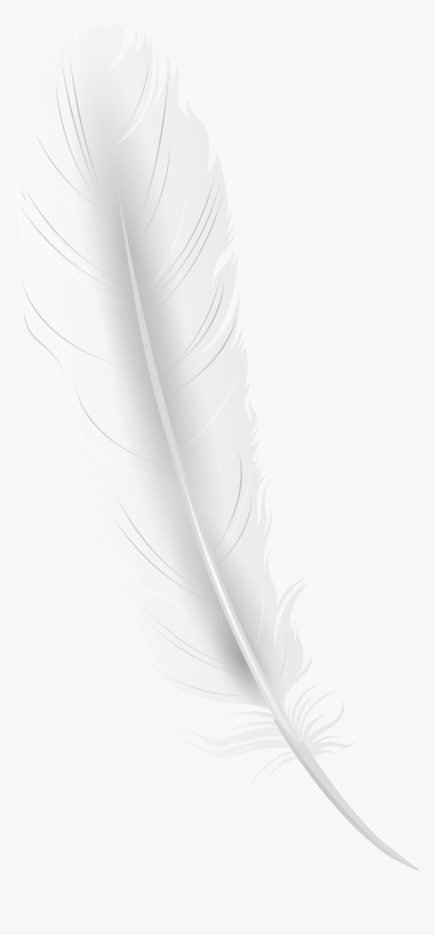 Transparent Quill Pen Clipart - White Feather Png, Png Download, Free Download