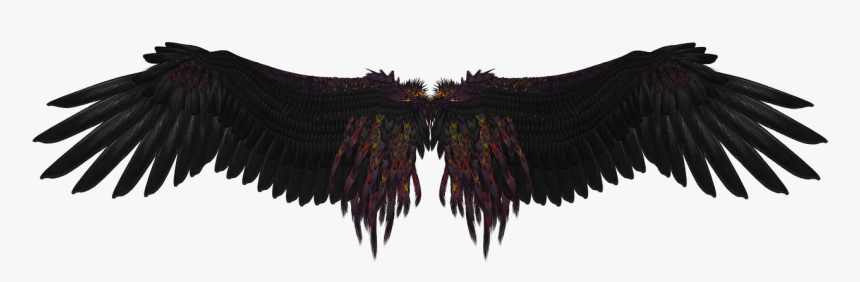 Wings Png Download - Black Angel Wings Art, Transparent Png, Free Download