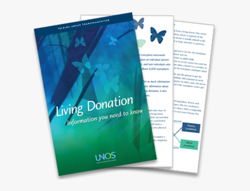 Living Donor Brochure - Flyer, HD Png Download, Free Download