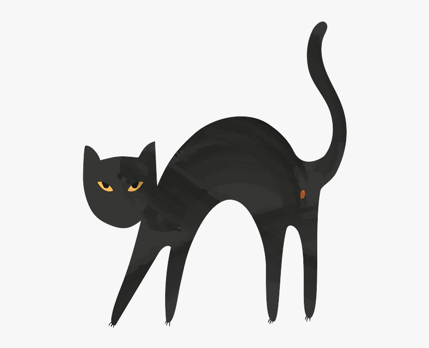Black Cat, HD Png Download, Free Download