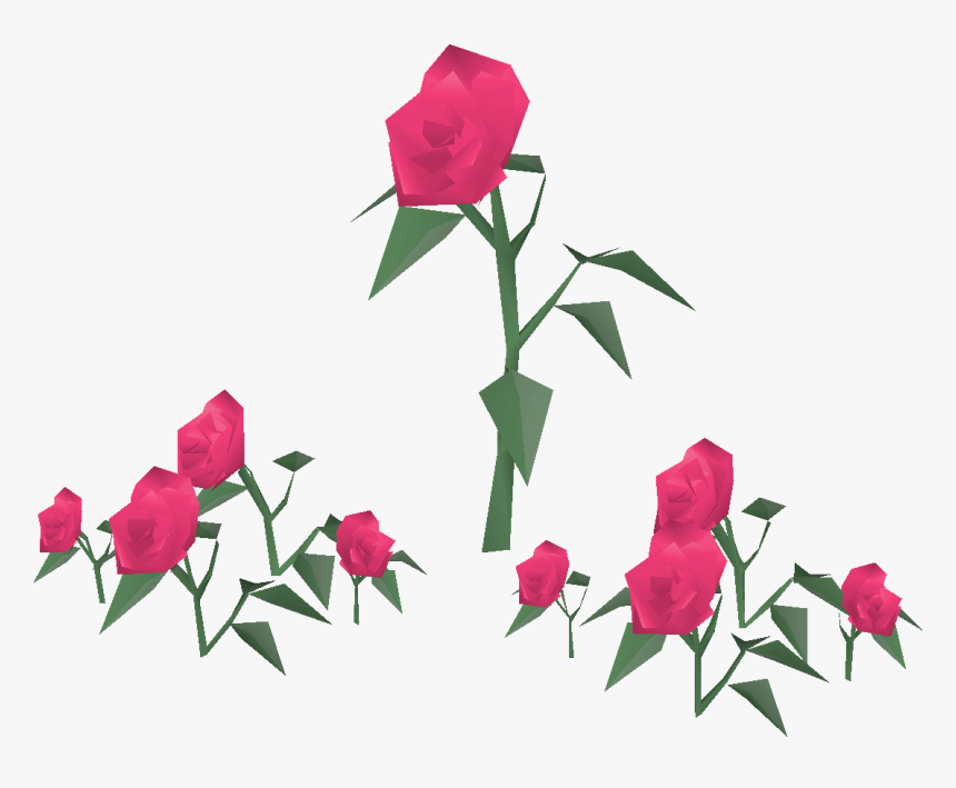 Old School Runescape Wiki - Garden Roses, HD Png Download, Free Download