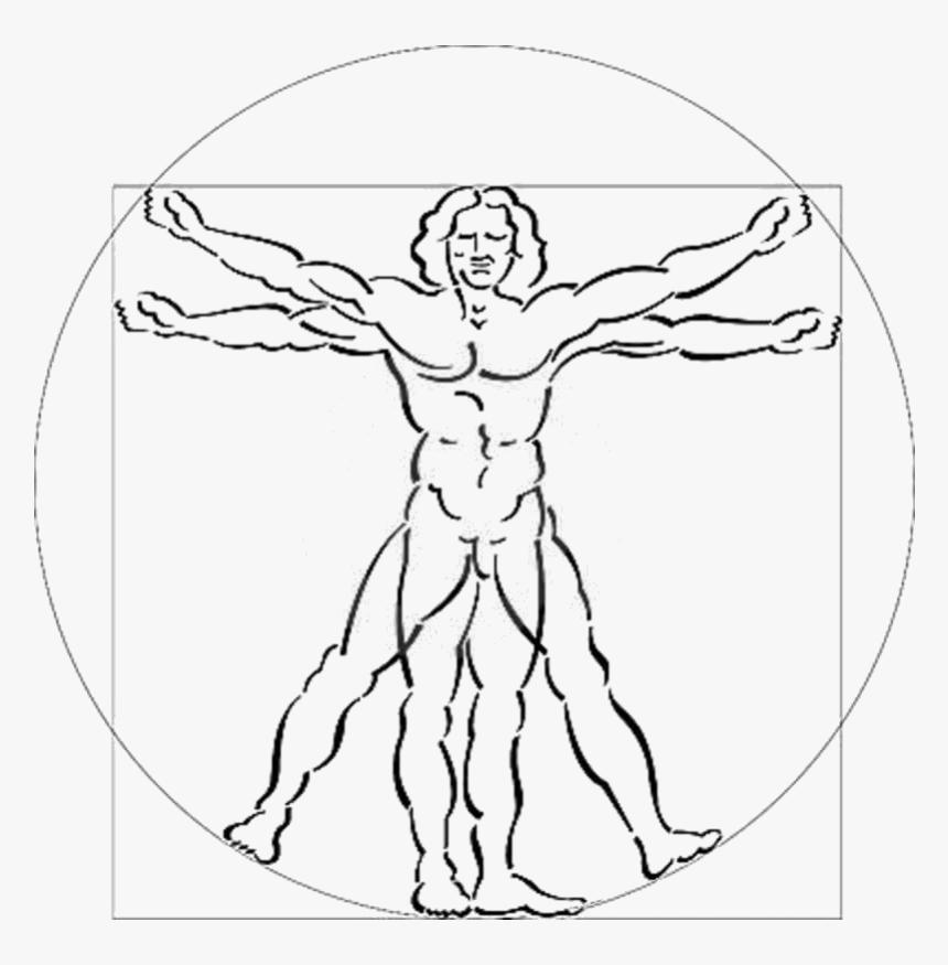 Vitruvian Man White Background, HD Png Download, Free Download
