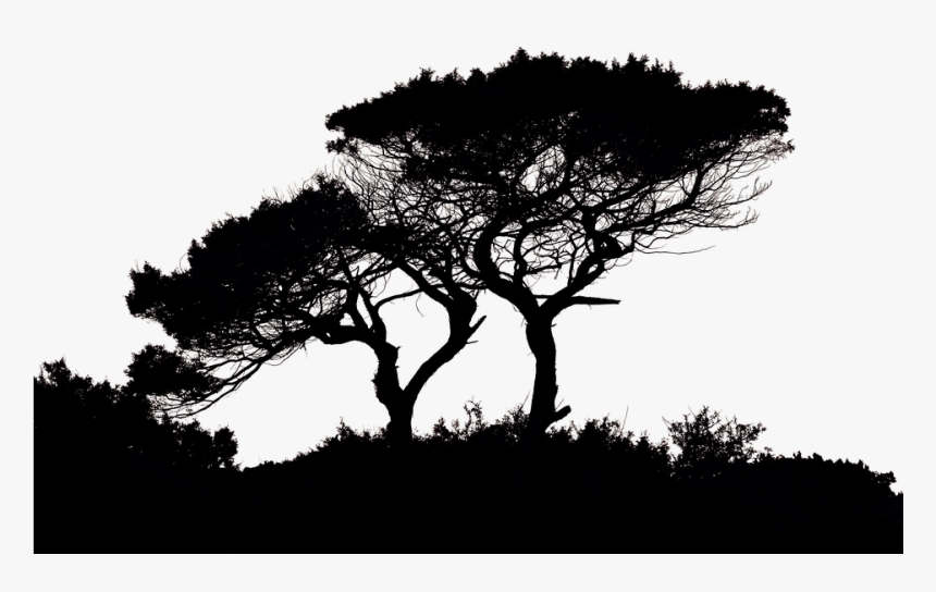 Landscape Silhouette, HD Png Download, Free Download