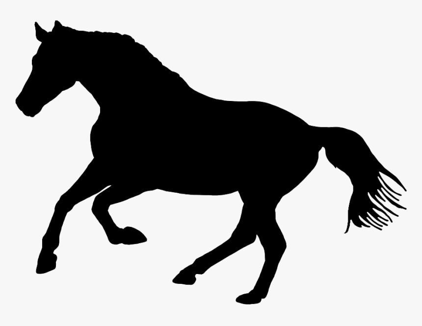 Black Silhouette Of Horse In Nature - Black And White Horse Logo, HD Png Download, Free Download