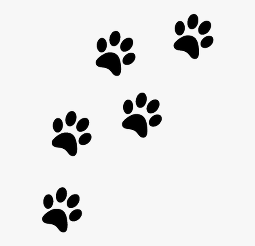 Thumb Image - Paw Prints Transparent Background, HD Png Download, Free Download