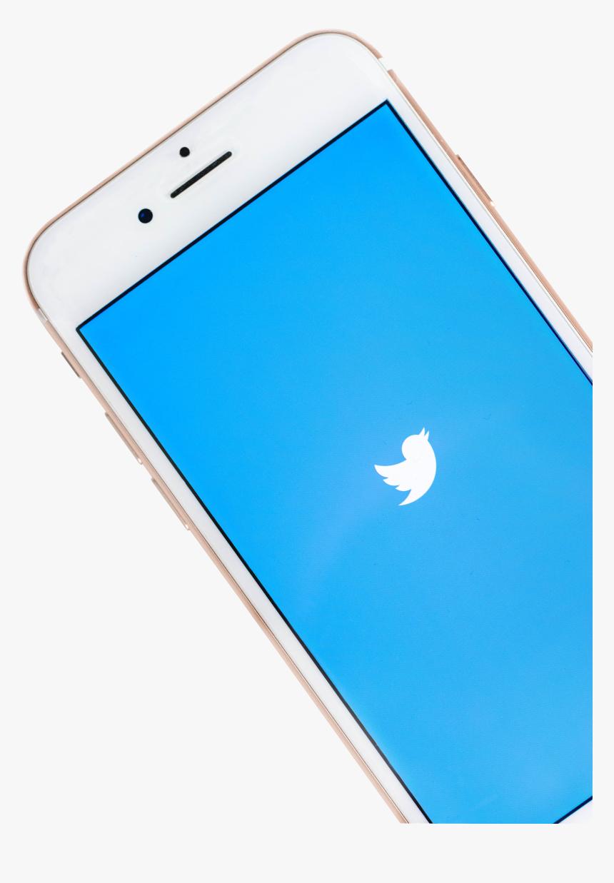 Twitter Bird Logo Png Transparent Background, Png Download, Free Download