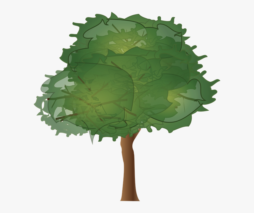 Tree Elevation, HD Png Download, Free Download