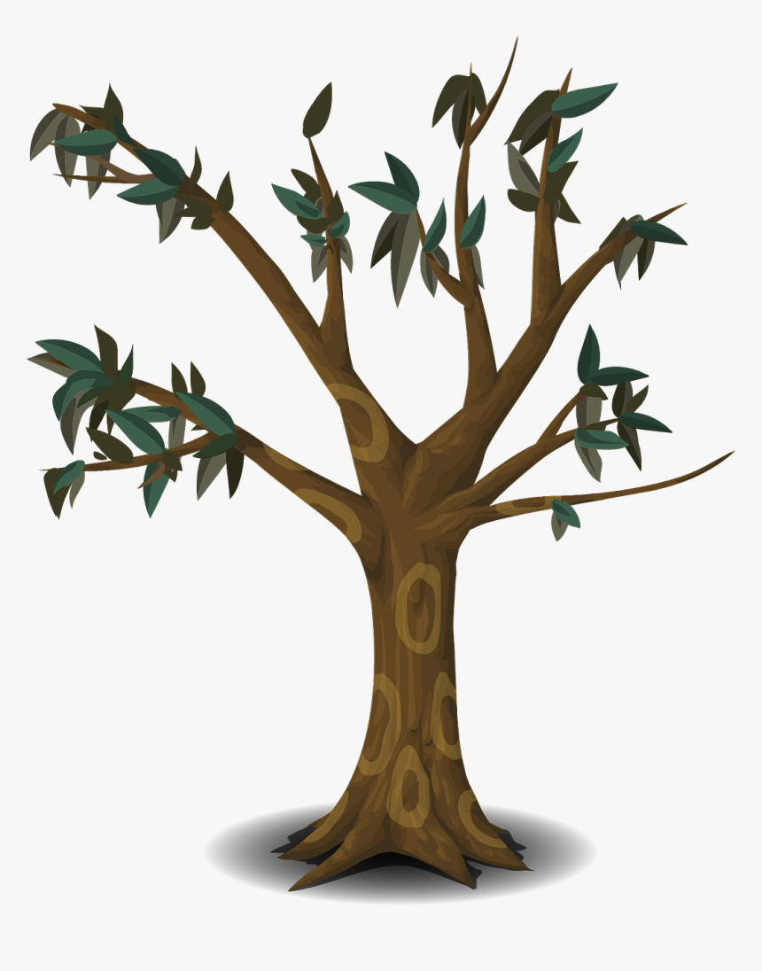 Cartoon Tree Branches Png, Transparent Png, Free Download