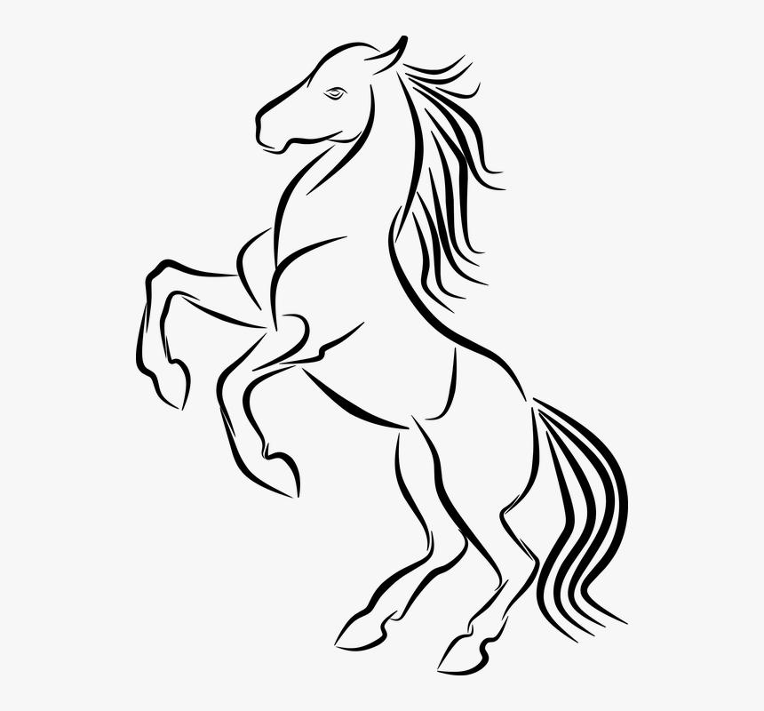Gambar Kuda Hitam Putih Keren Hd Png Download Kindpng