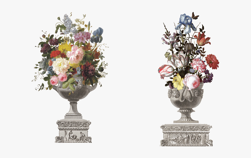 Classical Flower Vase Png Photos - Flowers In A Vase With Shells And Insects, Transparent Png, Free Download