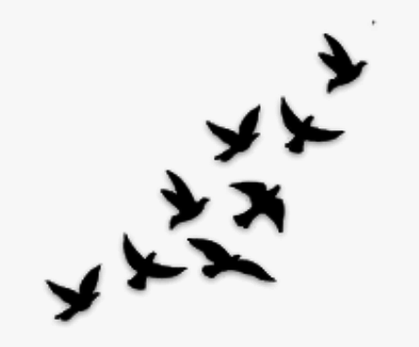 Thumb Image - Flying Birds Tattoo Designs, HD Png Download, Free Download
