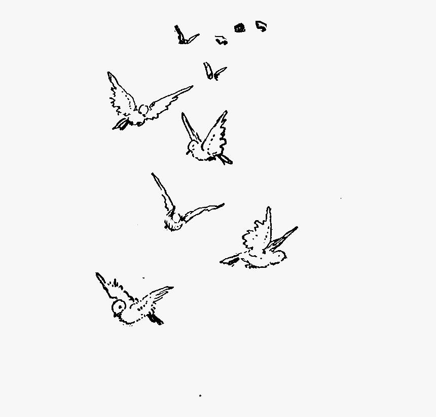 Dove Drawing At Getdrawings Cute Flying Bird Drawing Hd Png Download Kindpng