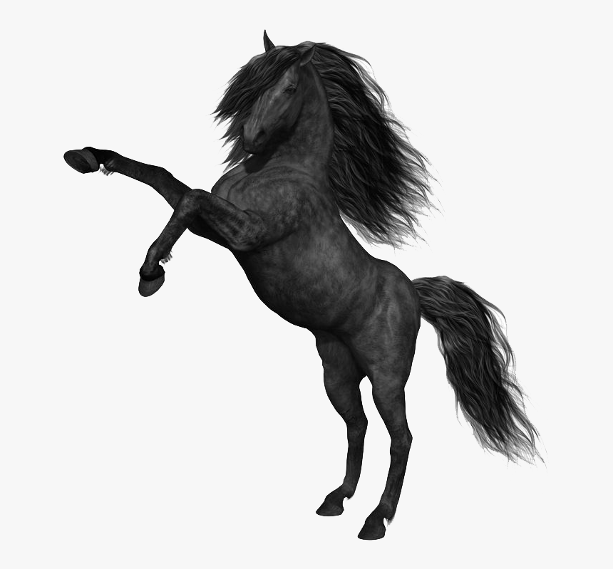 Mustang Horse Png Photos - Mustang Horse Png, Transparent Png, Free Download