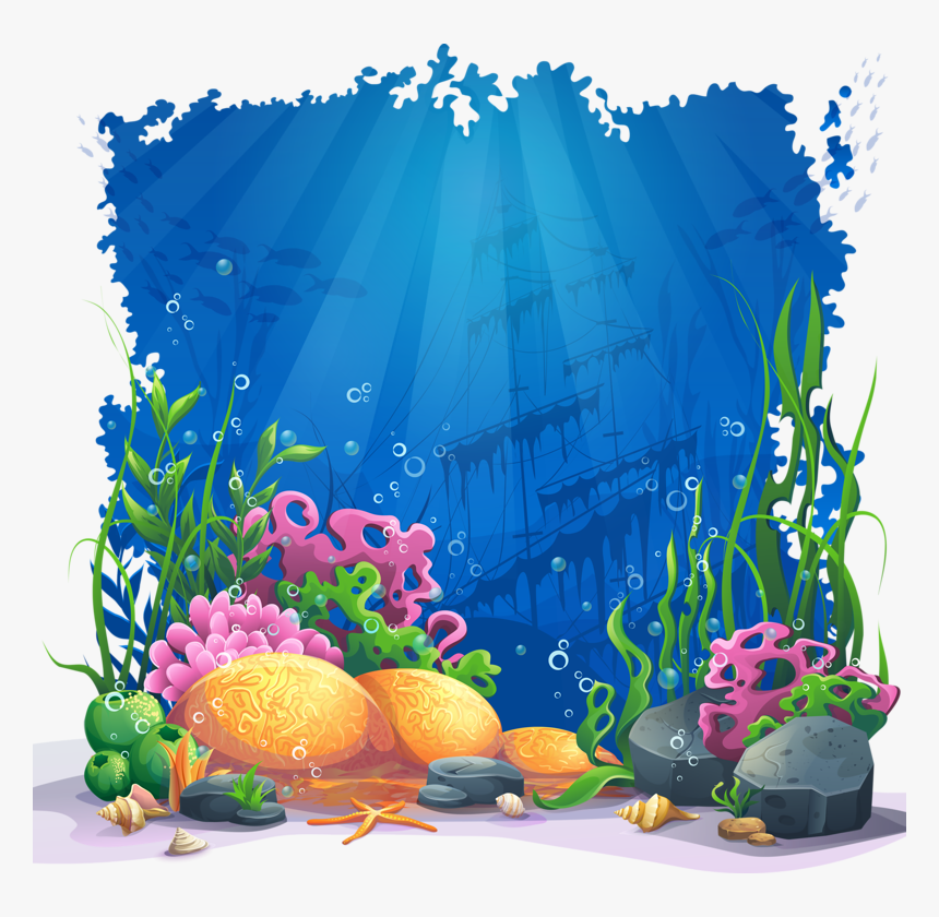 Transparent Colored Pencil Clipart Coral Reef Drawing Colour Hd Png Download Kindpng