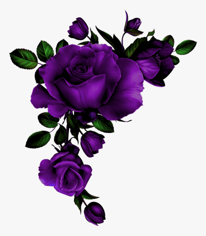 Rose Coin Mauve - Watercolor Red Roses Transparent Background, HD Png Download, Free Download