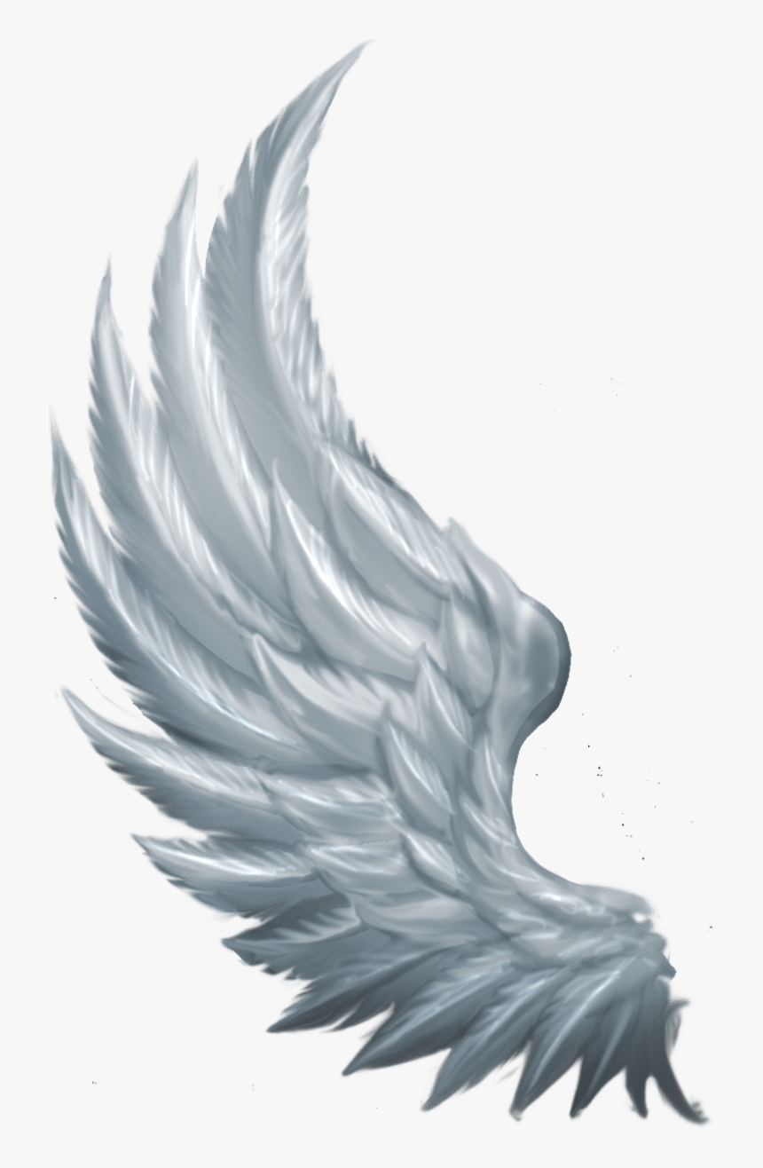 Side Angel Wings Png , Png Download - Transparent Side Angel Wings, Png Download, Free Download