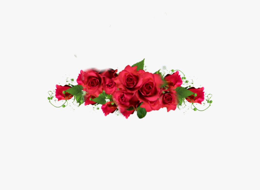 #rose #roses #border #redroses #red #redaesthetic #romantic - Sticker Red Rose Png, Transparent Png, Free Download