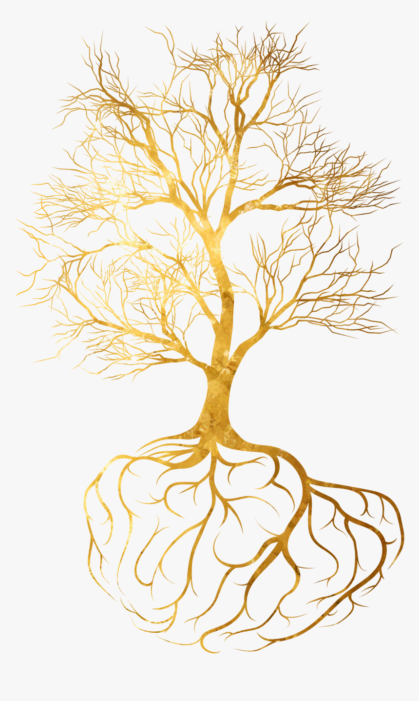 Toby Hana - Gold Tree Root Png, Transparent Png, Free Download