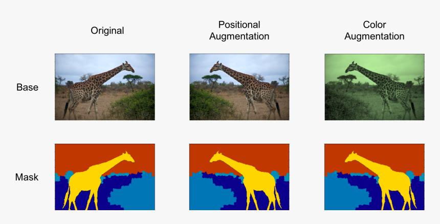 Drawing - Segmentation Example, HD Png Download, Free Download