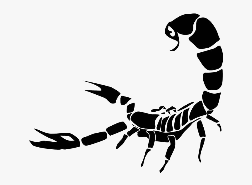 Portable Network Graphics Scorpion Clip Art Transparency - Scorpion Png, Transparent Png, Free Download