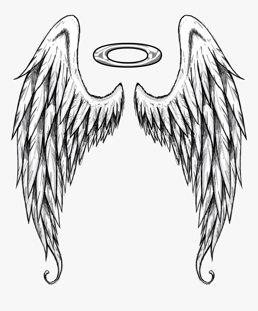 Home Wing Tattoo Designs Design Tattoos Angel Wings Black And White Angel Wings Drawing Hd Png Download Kindpng