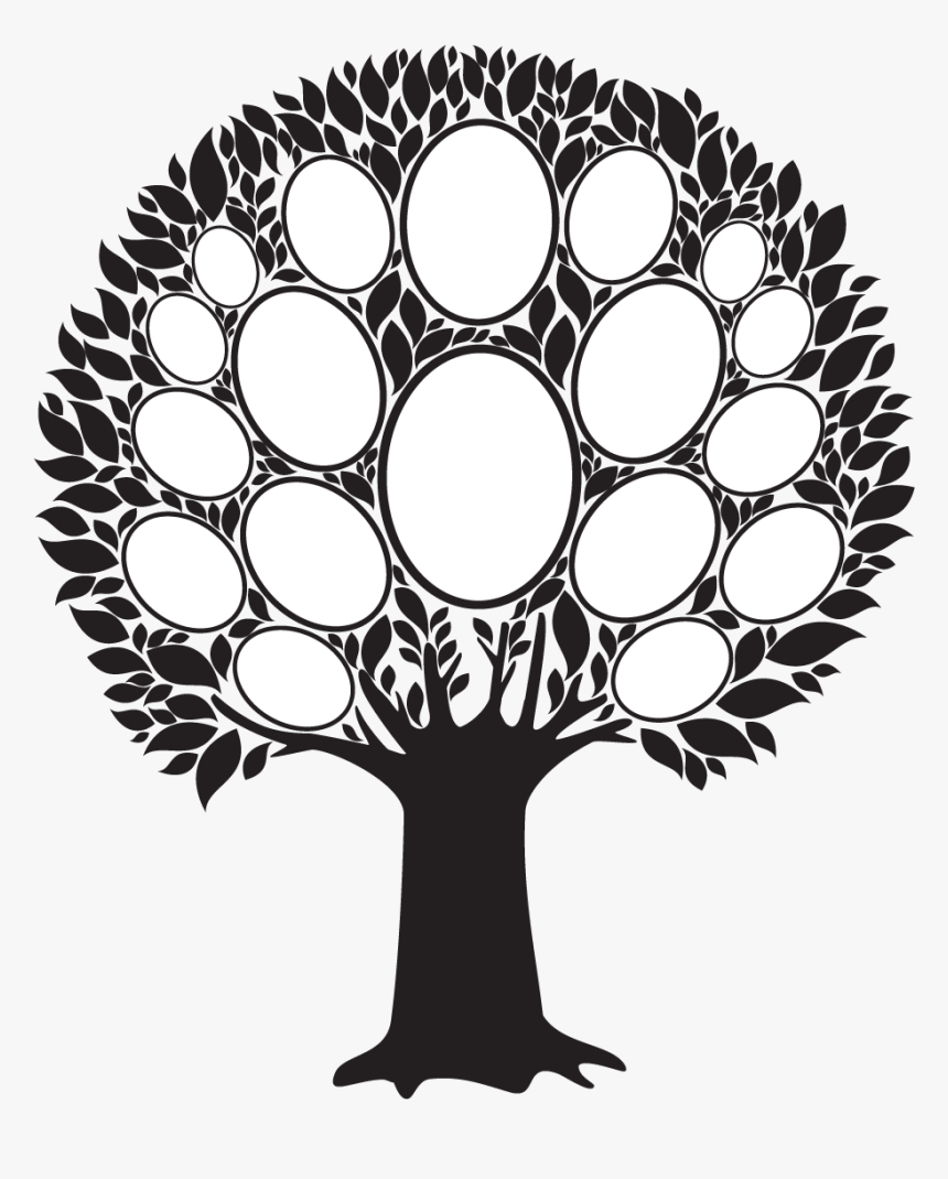 Family Tree Photo Frame Png , Png Download - Empty Family Tree Clip Art, Transparent Png, Free Download