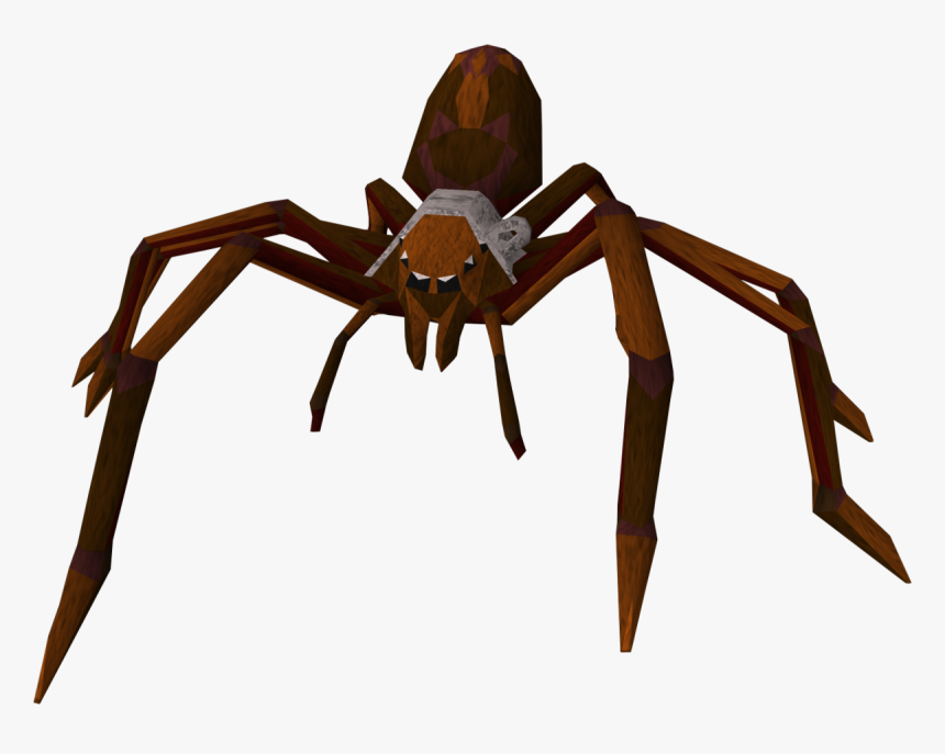Giant Spider On Transparent, HD Png Download, Free Download